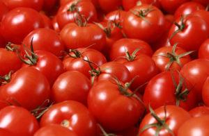 Seaside Grown Tomatoes in a bushel